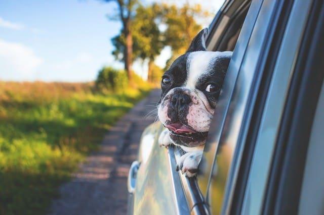 Cómo comprar tu nuevo coche más barato sin el plan PIVE